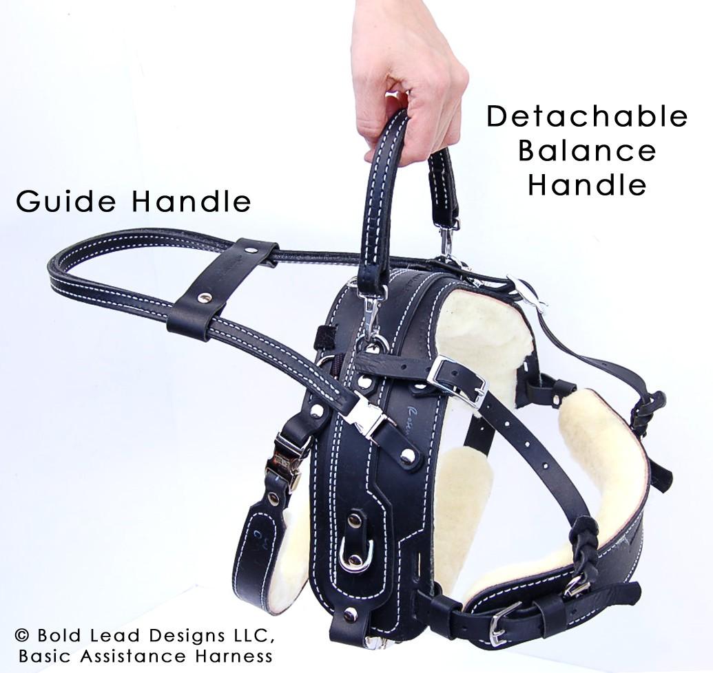 Bah With Detachable Balance Handle And Guide Handle Option