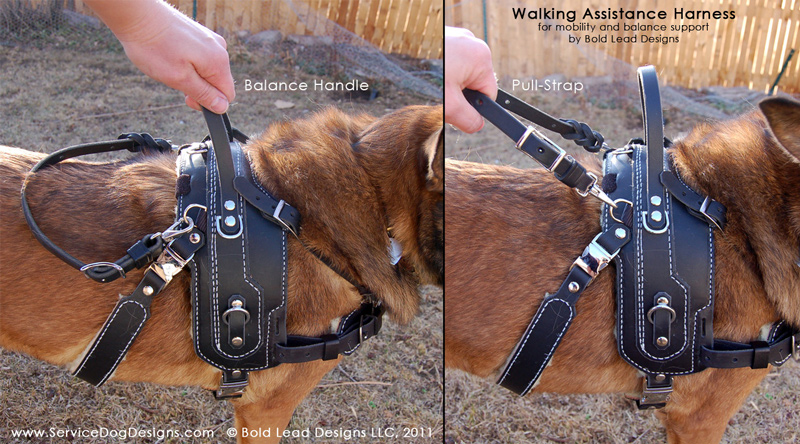 Basic Assistance Harness