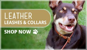 Leather Leashes & Collars