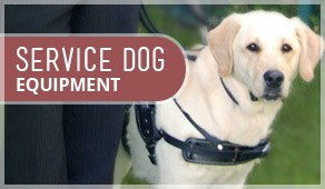 Service Dog Equipment