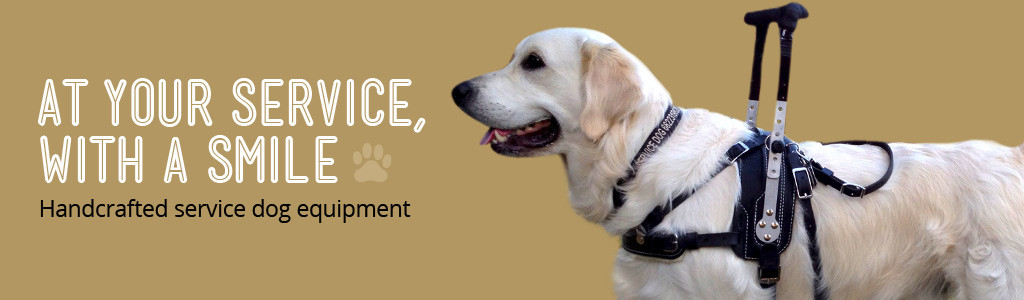 Service Dog Equipment