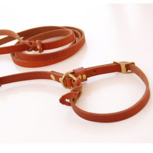 BLD Fastener Free Lead leather leash and collar combo