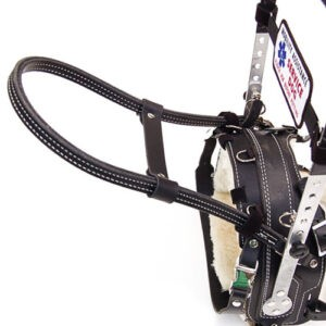GUIDE HANDLE on Mobility Support Harness by Bold Lead Designs