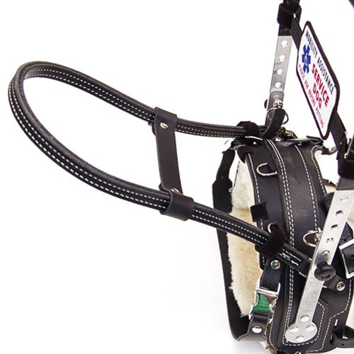 Leather Dog Harnesses For Sale