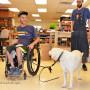 Custom designing a wheelchair leash for a service dog.