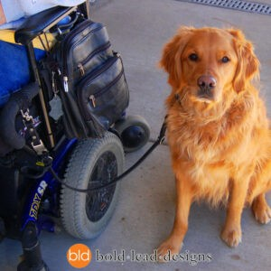 Quick-Release Wheelchair Leash System in use