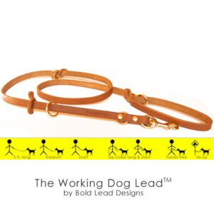 Working Dog Lead in tan with illustration