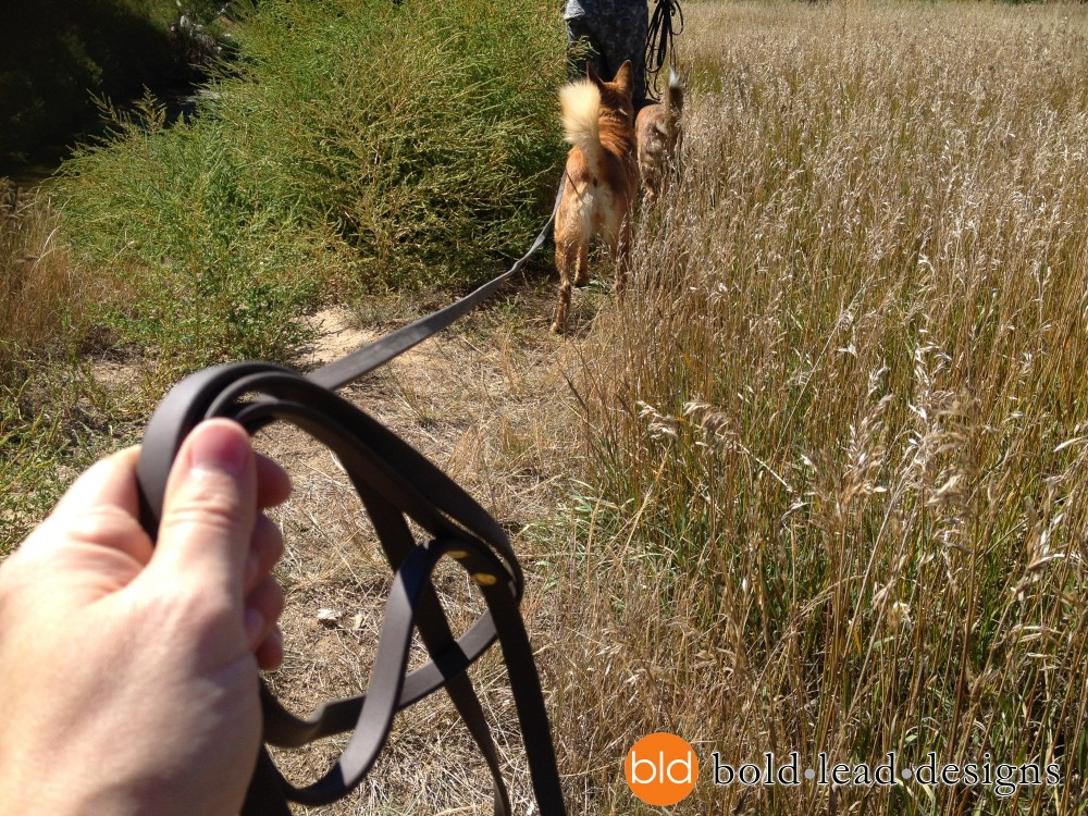 271595265389 likewise Index together with Bottcher Harness furthermore Tracking Lead Long Leather Leash further Canine Equipment Harness. on canine tracking harness
