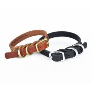 Dainty Dog braided double d-ring collar feature image