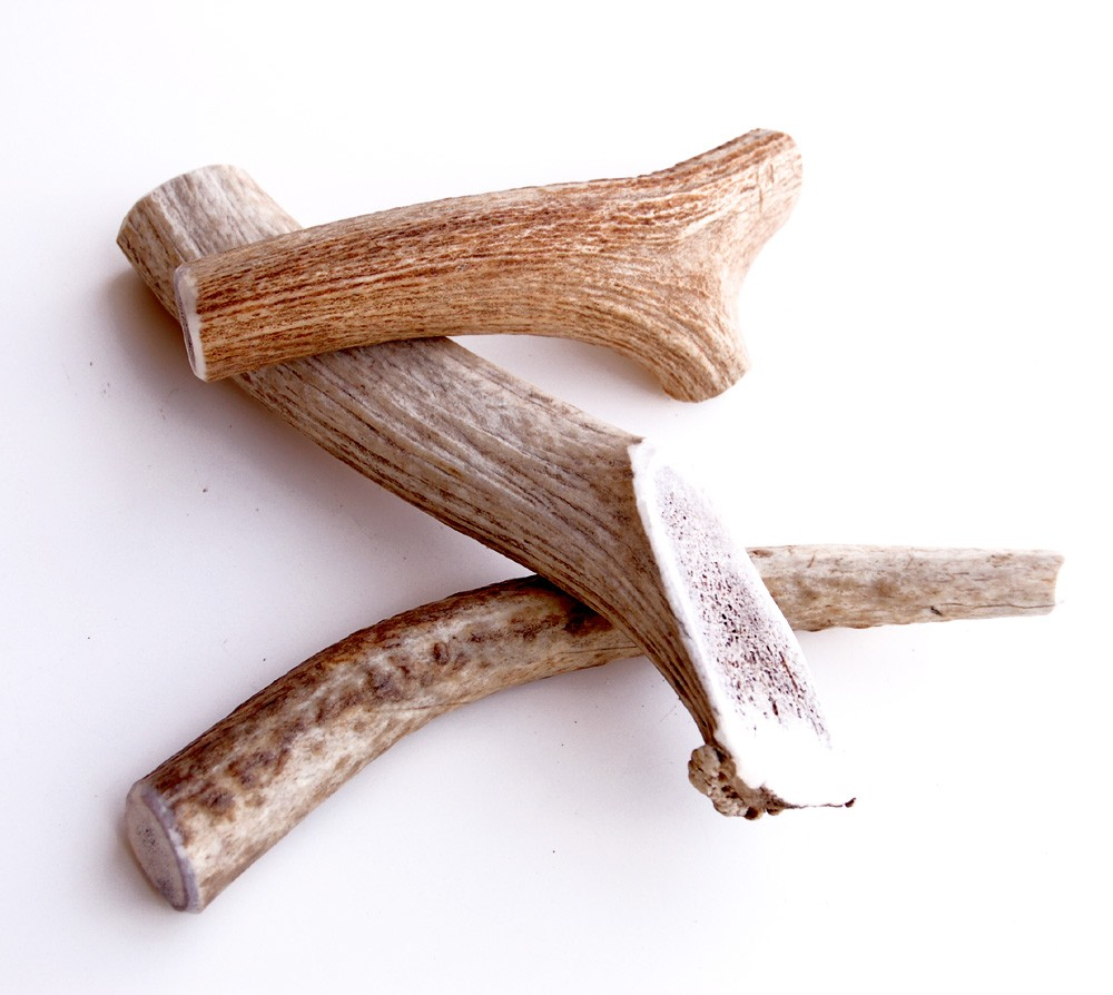 Elk Antler Chew 100 Natural And Healthy Bold Lead Designs