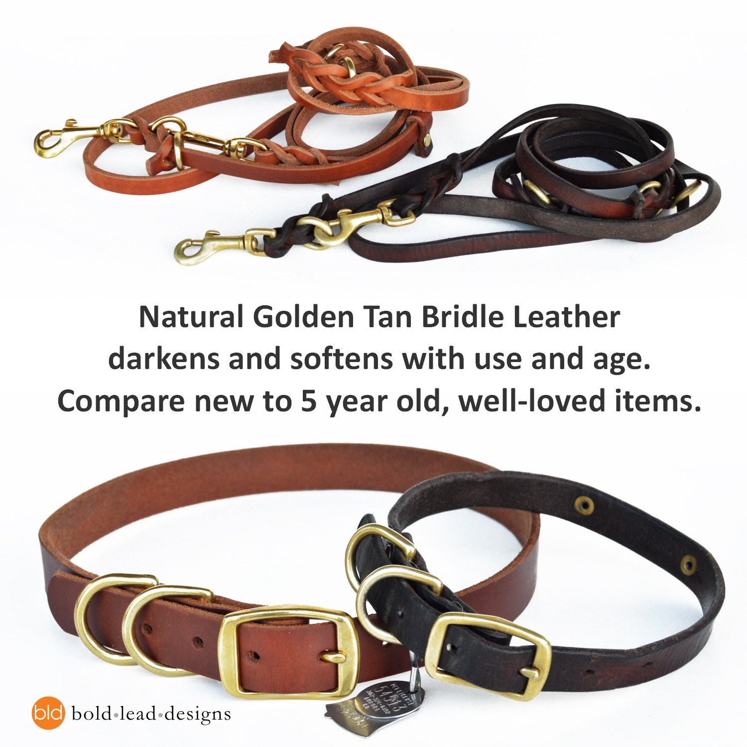 Colorful Dog collar Quick Release Dog Collar in Black Leather and Brass Hardware for Small and Medium Dogs Dog Collar