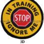 3D In Training Ignore Me 2785