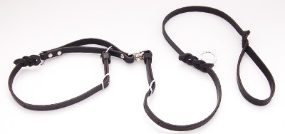 Custom Wheelchair Leash (use with WC hook) for limited dexterity and  quadriplegia