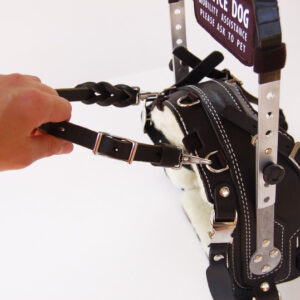 Pull-strap on BLD Mobility Support Harness