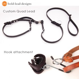 Leather quad leash and wheelchair hook