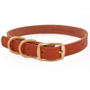 double d ring leather dog collar