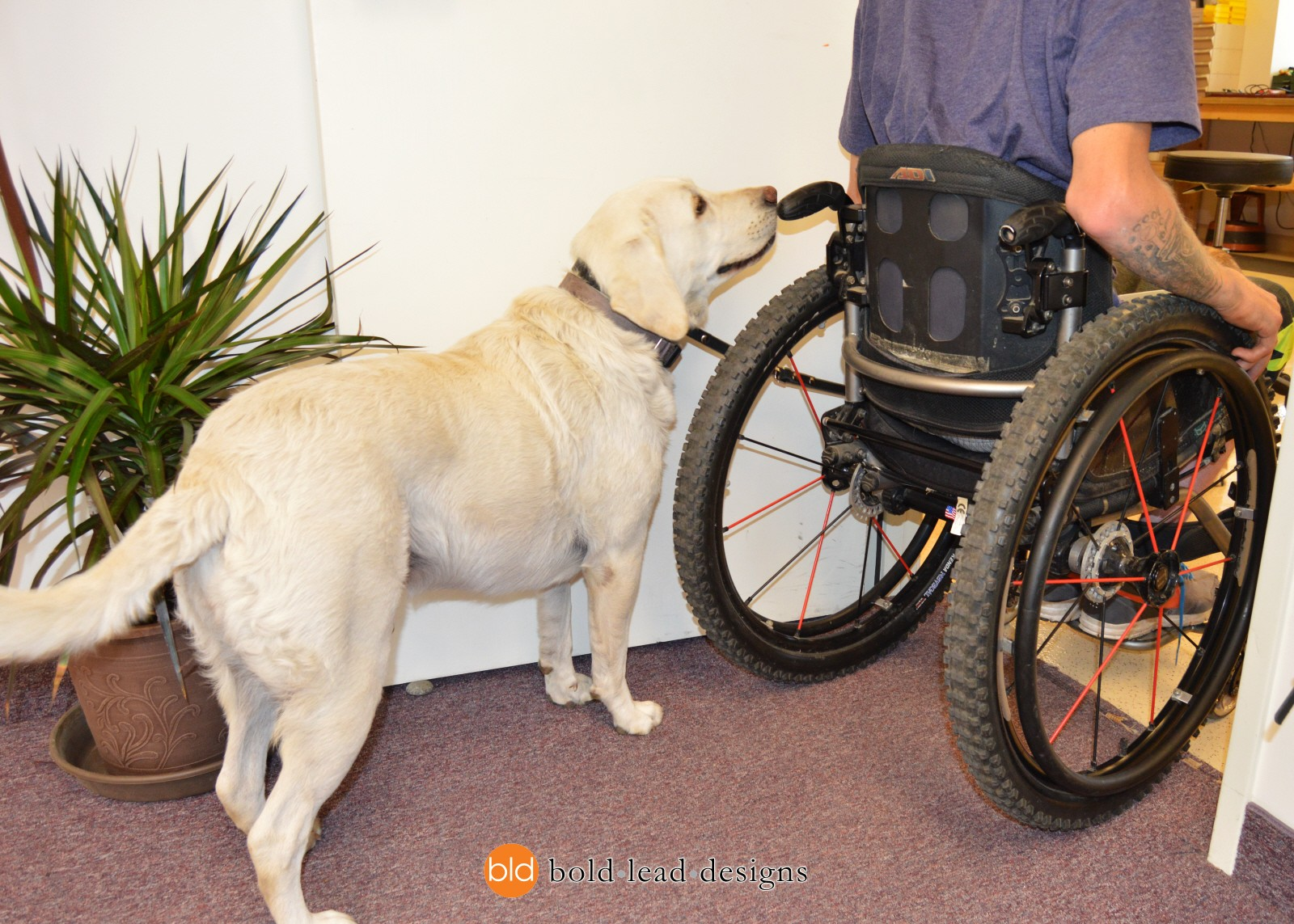Quick Release Wheelchair Leash System A Detachable