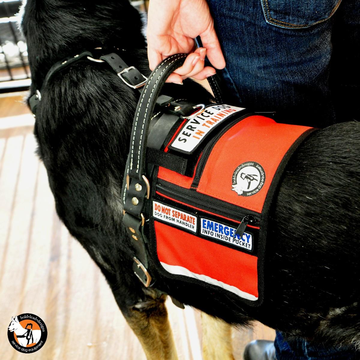 Service Dog Cape Vest Bold Lead Designs