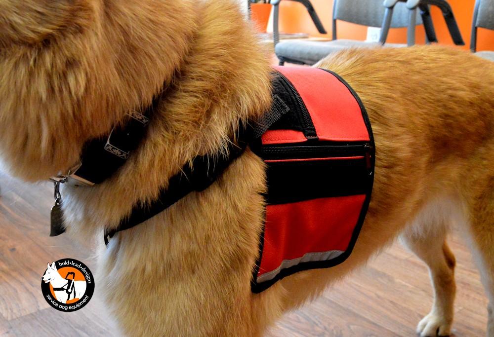 Service Dog Cape Vest