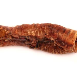 AP 6inch buffalo trachea tube
