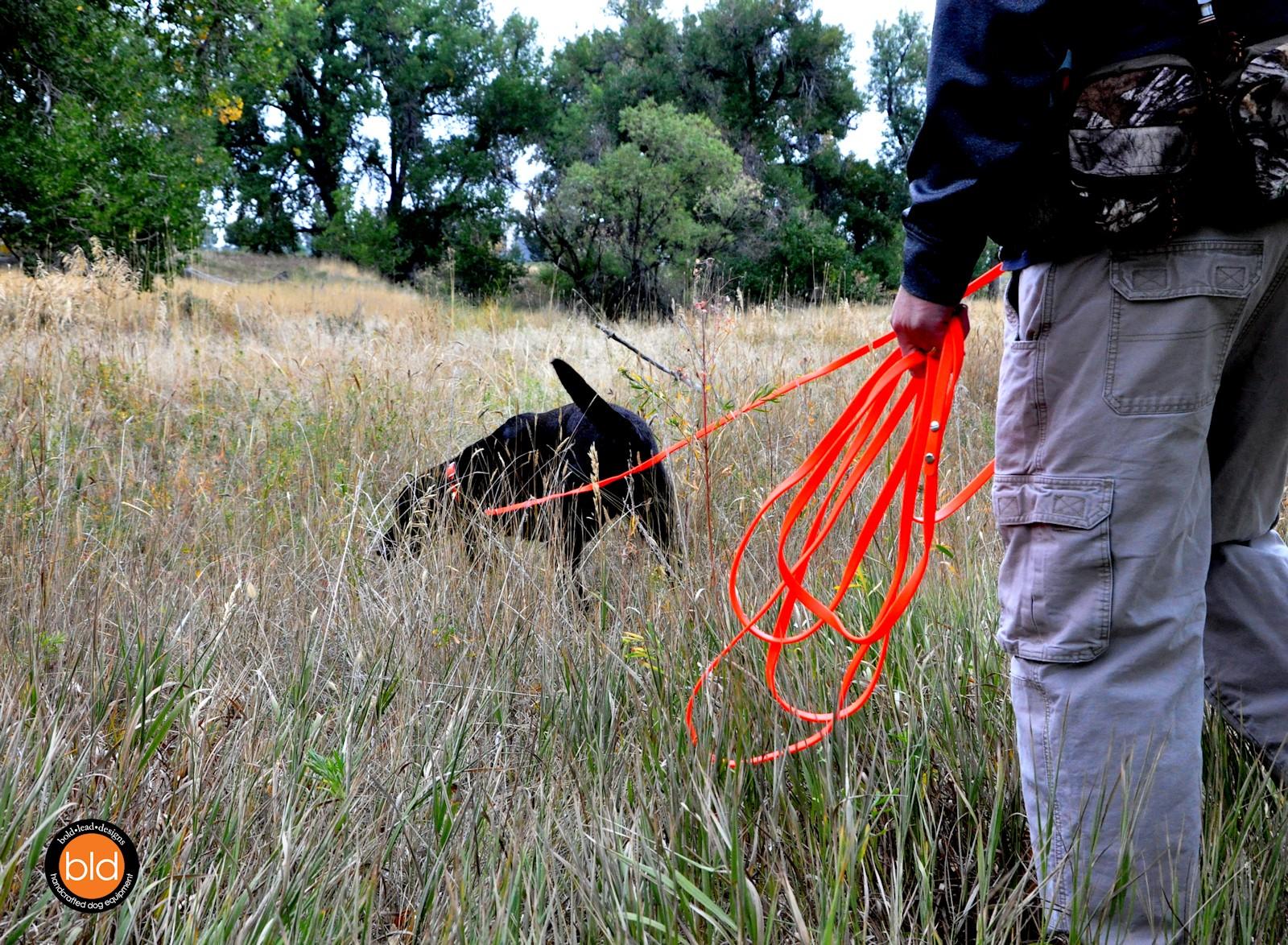Brahma Leads Affordable Dog Training Leash Tracking