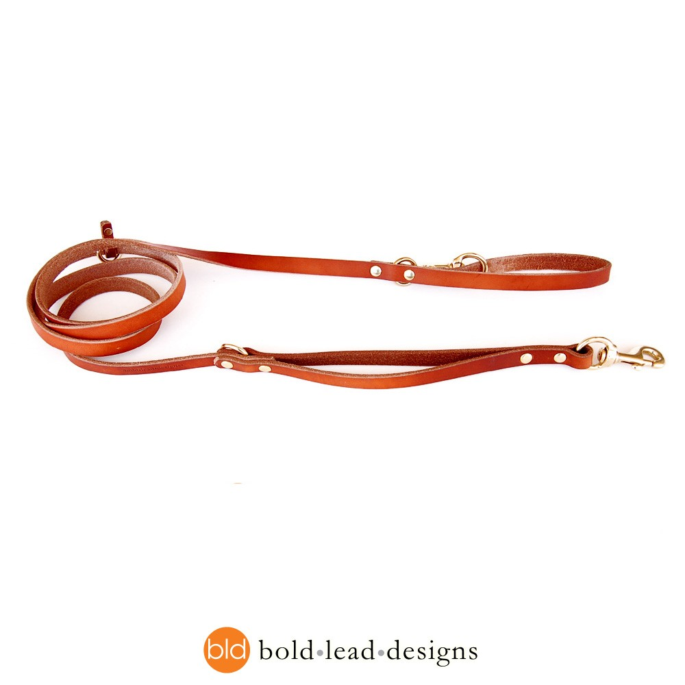 Double Dog Leash For Small Dogs Hands Free