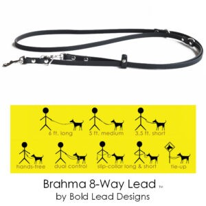 brahma 8-way lead graphic