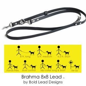 brahma 8×8 lead graphic