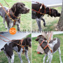Connected Control No-Pull Leather 2-point dog walking harness by Bold Lead Designsn