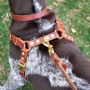 Connected Control No-Pull Leather 2-point dog walking harness by Bold Lead Designs